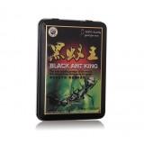 黒蟻王(BLACK ANT KING)